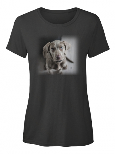 Weimaraner Hund T-Shirt